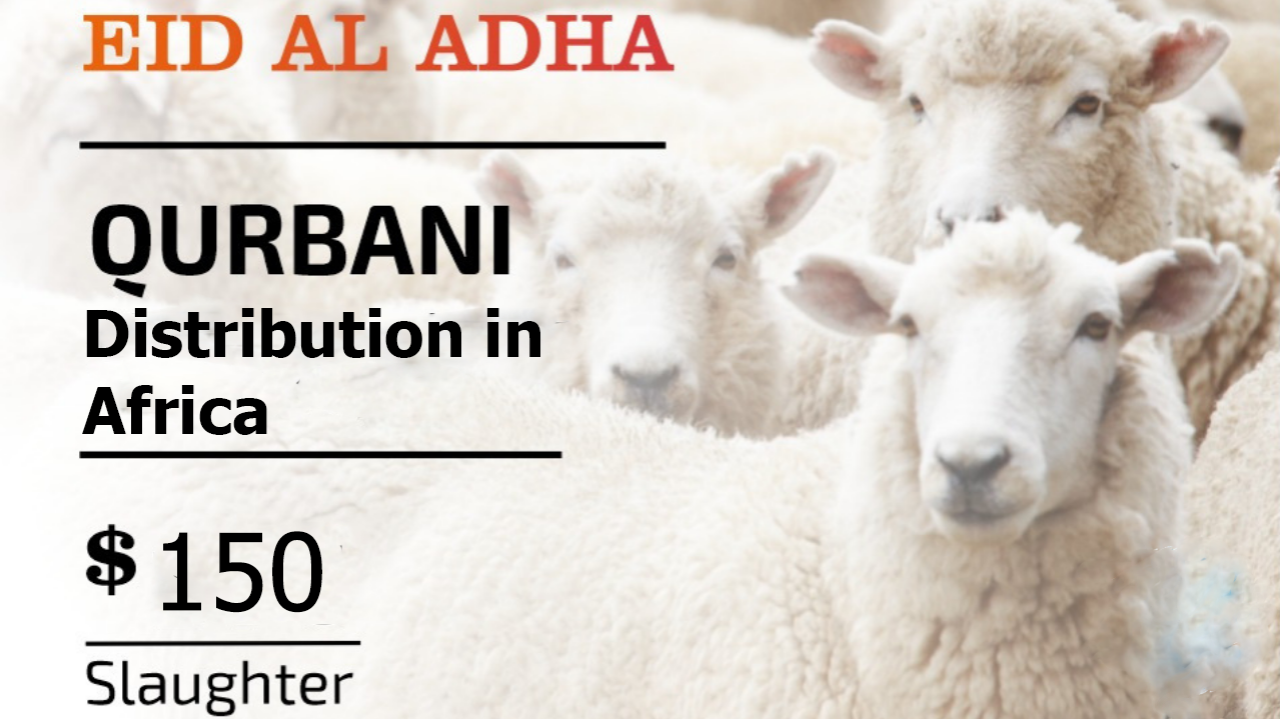 Qurban/udhiyah Project 2019   MyEvent