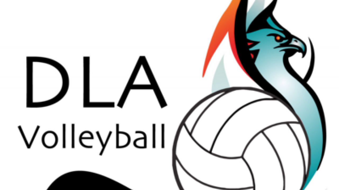 Del Lago Boys Volleyball